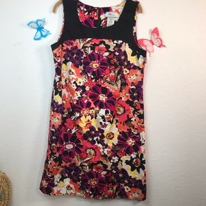 d by ltd. shift dress size 16 great stretch too